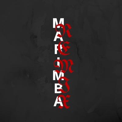 God's Plan (Marimba Remix)
